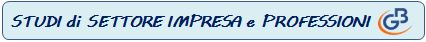 Studi_di_Settore_Impresa_e_Professioni