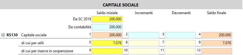 Prospetto del Capitale sociale e delle Riserve: campi gialli e campi azzurri nella sezione del caspitale sociale