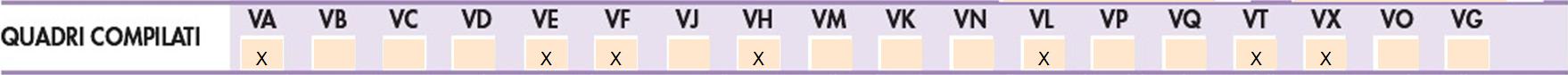 """Iva e Iva Base 2021: quadro VH quando e perché: nella sezione """"quadri compilati"""" del VL è valorizzato il campo del VH"""