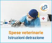 Spese veterinarie: come beneficiare della detrazione?